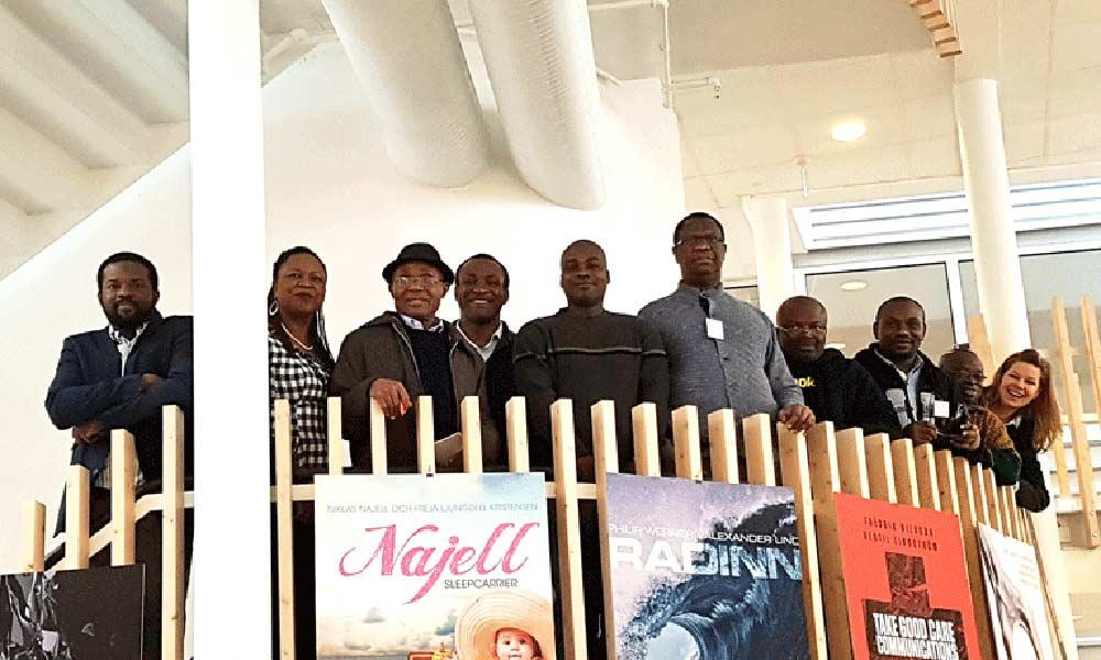 Svenskt innovationssystem på export till Nigeria
