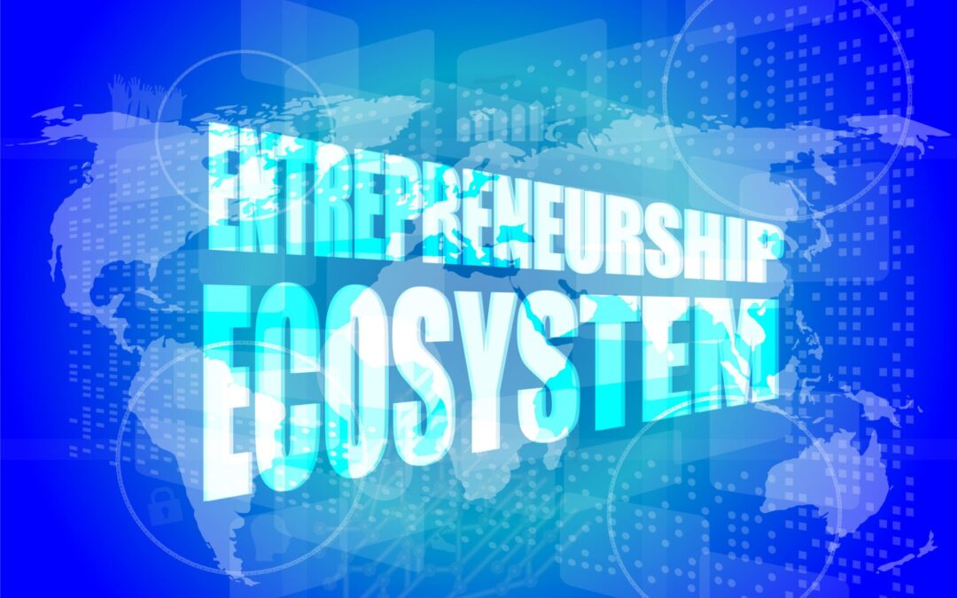 Entrepreneurial Ecosystems and Digitalisation: What Is Going on, and What Can (and Should) We Learn?